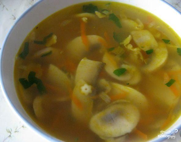 рецепты приготовления супа из свежих грибов