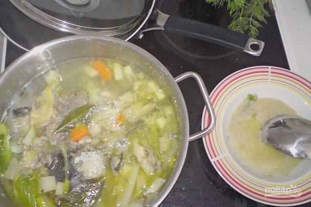 Суп из сазанa