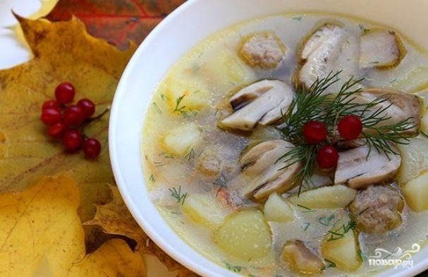 суп из белых грибов сушеных на мясном бульоне рецепты