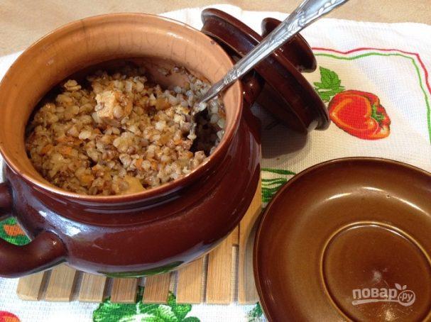 Условия для домашних мандаринов 14