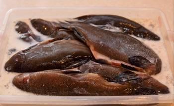 Линь в фольге - пошаговый рецепт с фото на