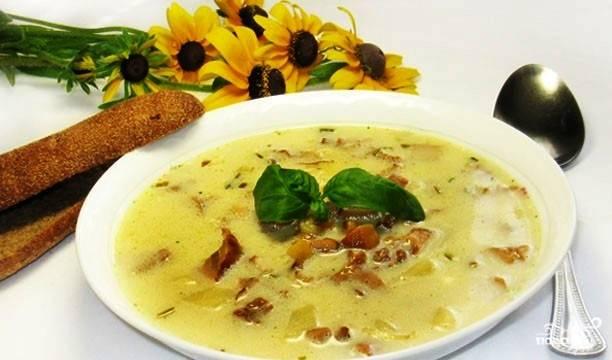 Летний суп из лисичек с плавленым сыром