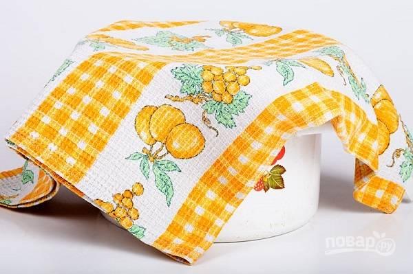 2. Накройте тесто чистым полотенцем и оставьте в тепле на пару часов.