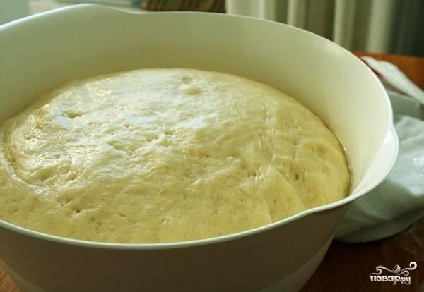 Кладем наш колобок в большую форму, смазанную растительным маслом. Накрываем пленкой или полотенцем, ставим в теплое место и оставляем на час-полтора. Тесто должно увеличиться в объеме примерно вдвое.