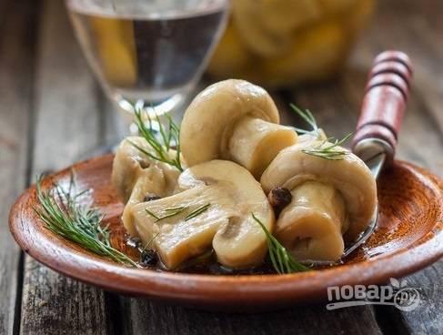 6. Аппетитные шампиньоны будут вас и ваших близких радовать своим вкусом уже часа через 4. Угощайтесь!