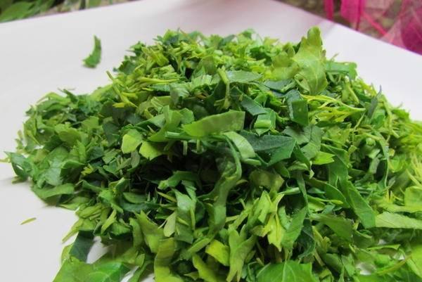 2. Самую разнообразную зелень, которая есть в доме, вымыть, как следует просушить и измельчить ножом.