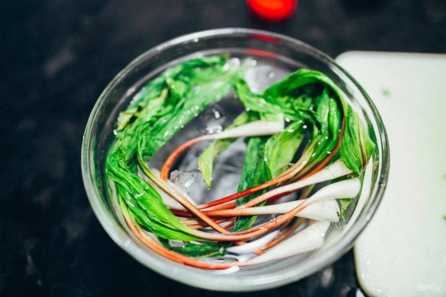 Зелёный лук хорошо промойте. Белую часть нашинкуйте, а зелень оставьте в воде с холодной водой.