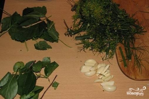 Подготовить зелень и помыть огурчики.