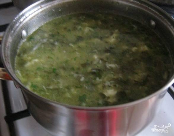 Зеленые щи из шпината - пошаговый рецепт