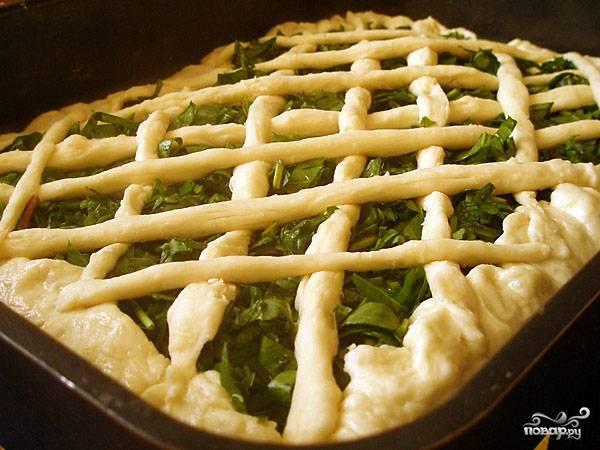 Пирог со щавелем - пошаговый рецепт с фото на