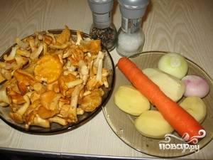 Суп из замороженных лисичек - пошаговый рецепт с фото на