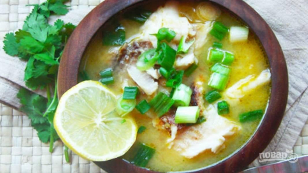 Суп из осетра
