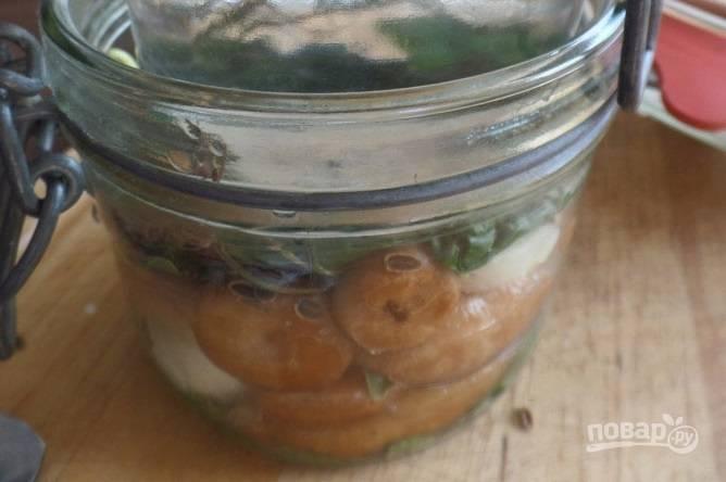 Соленые волнушки - пошаговый рецепт