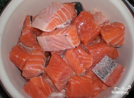 Уложить рыбу в миску, посолить, поперчить.