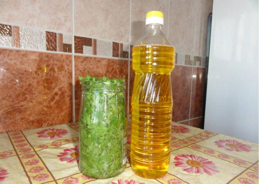 Кинза на зиму - пошаговый рецепт с фото на
