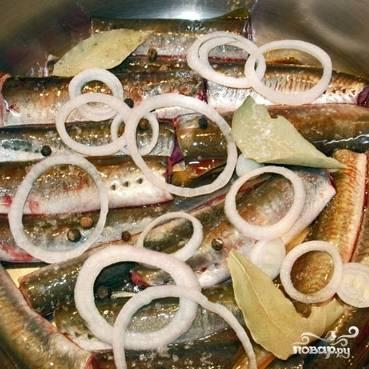 Минога в оливковом масле - пошаговый рецепт с фото на