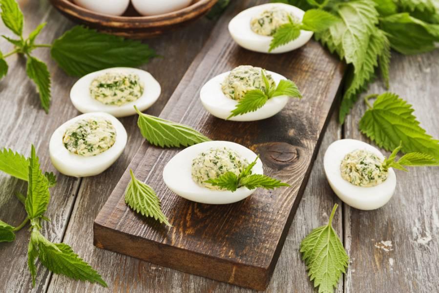 Крапива: полезные свойства и рецепты приготовления