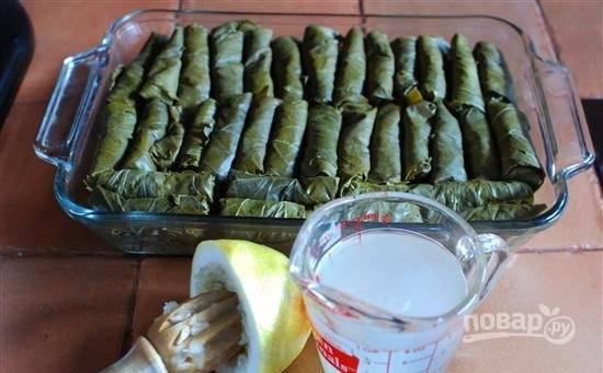 Азербайджанская долма - пошаговый рецепт