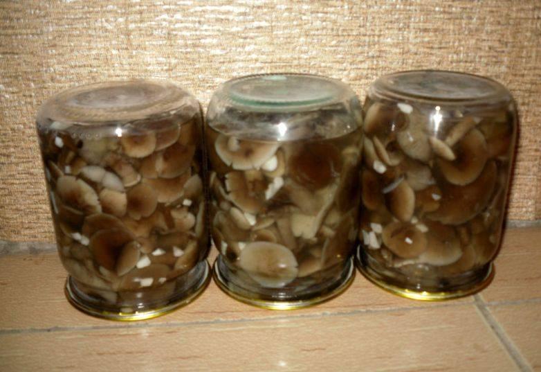 Маринованные опята с чесноком - пошаговый рецепт