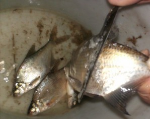 Рыба, запеченная на решетке - фото шаг 1