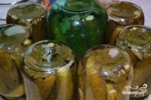Огурцы консервированные болгарские - фото шаг 5