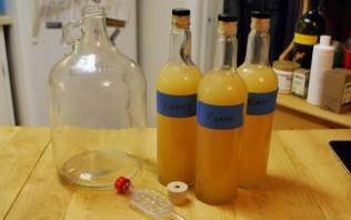 Квас из березового сока - фото шаг 2