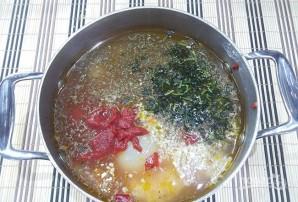 "Классический суп ""Харчо"" - фото шаг 7"