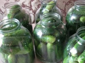 Огурцы соленые с водкой - фото шаг 2