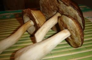 Подосиновики, жареные с луком - фото шаг 1