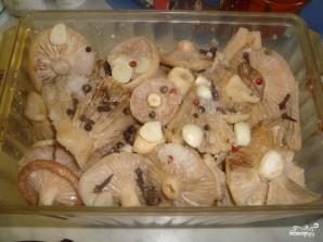 Засолка грибов груздей - фото шаг 4
