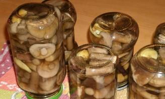 Закатка грибов на зиму - фото шаг 6