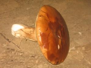 Cуп из белых грибов с перловкой - фото шаг 1