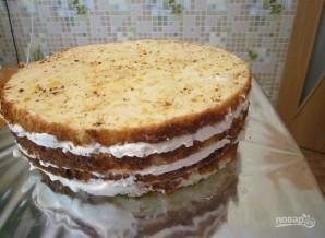 Бисквитный торт с кремом из сгущенки - фото шаг 6
