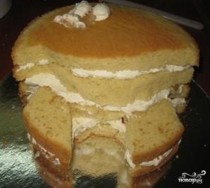 "Торт ""Медвежонок"" - фото шаг 8"