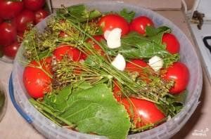 Соленые помидоры без закатки - фото шаг 3