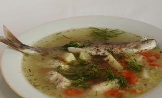 Суп из речной рыбы - фото шаг 5