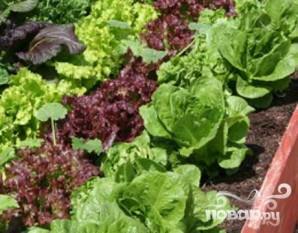 Зимний салат со свежей зеленью - фото шаг 2