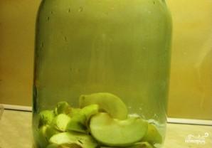 Яблочная водка - фото шаг 2