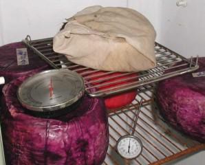 Сыр блю в домашних условиях - фото шаг 5