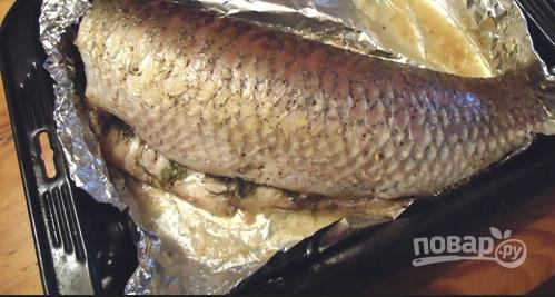 Как приготовить рыбу белый амур в духовке