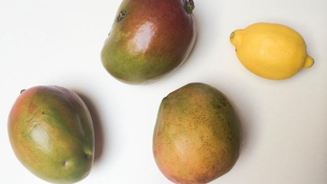 Напиток из манго - фото шаг 1