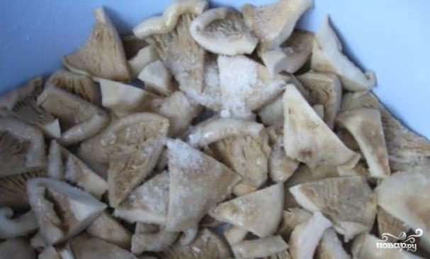 Готовность грибов