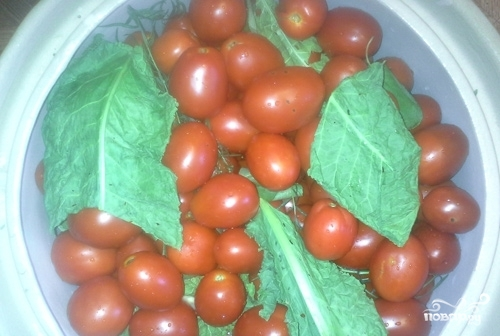 Засолка помидоров в бочках - фото шаг 4