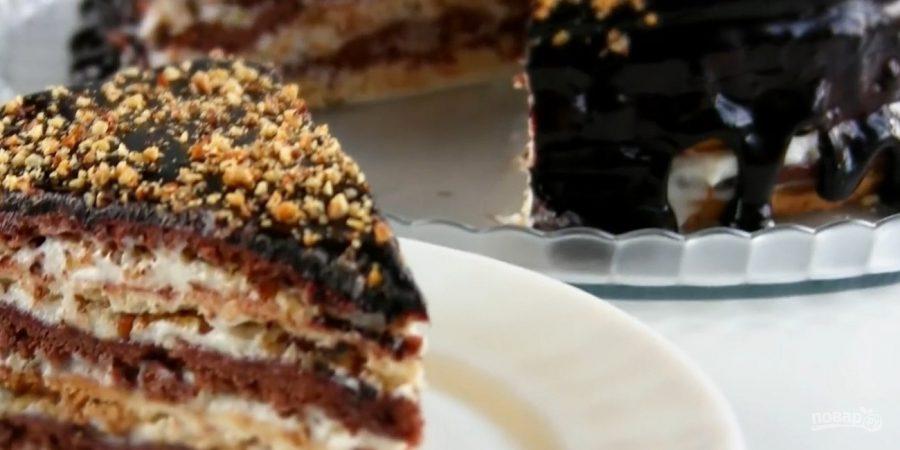Как приготовить торт мишка пошаговый рецепт 2