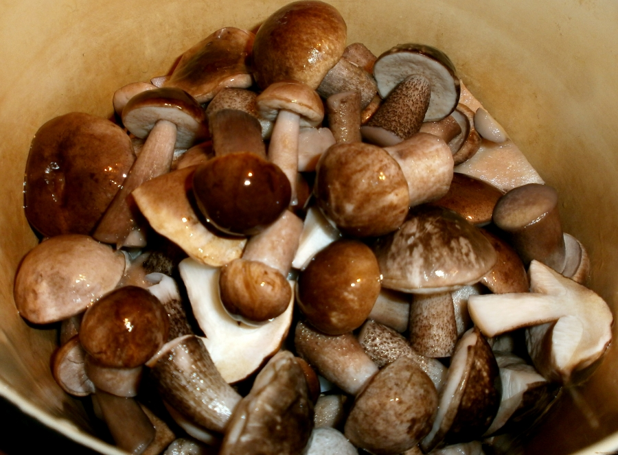 Рецепт Маринованные подберезовики на зиму