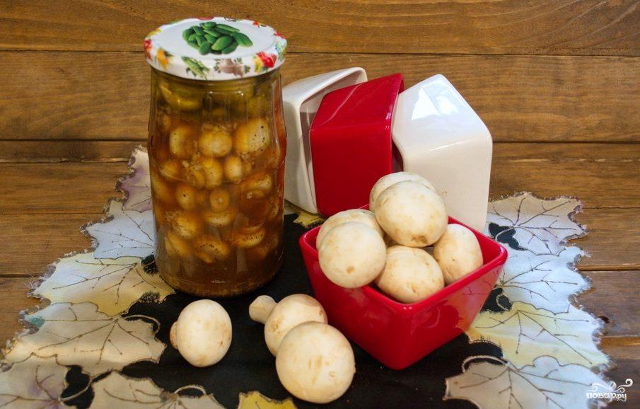 Закатка грибов на зиму рецепты фото