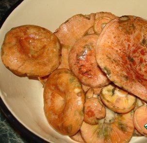 Рецепт Тушеные рыжики