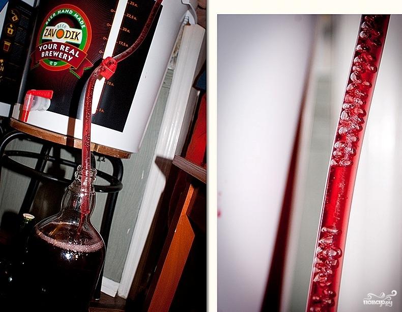 Вино из терновника - фото шаг 6