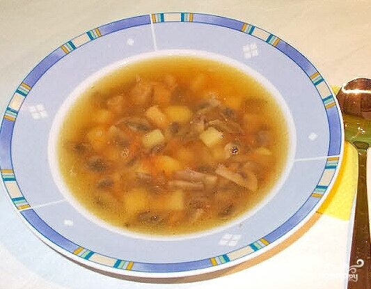 Суп грибной с мясом