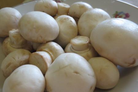 Рецепт Фрикасе с грибами